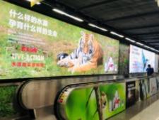 农夫山泉的深圳地铁通道广告真不错