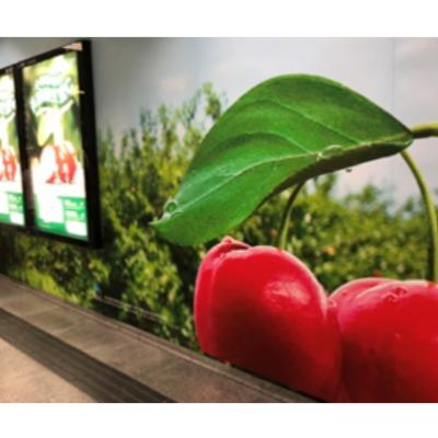 天然维生素C——白石洲深圳地铁广告