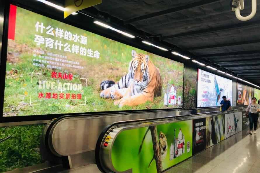 农夫山泉深圳地铁通道广告